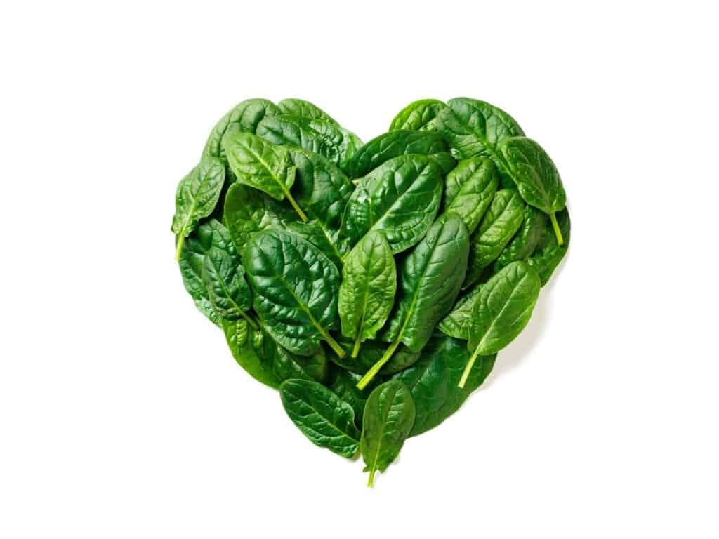 Heart shape made from spinach leaves, isolated